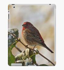Finch Perching iPad Case/Skin