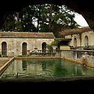 The Pool by Joe Mortelliti