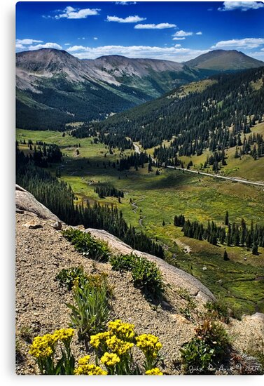 Independence Pass Overlook by John  De Bord Photography