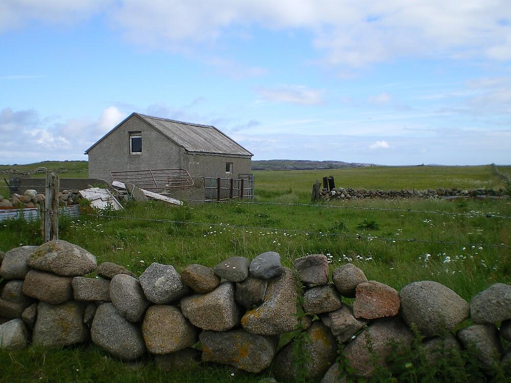 Ireland Countyside by Tim Butt