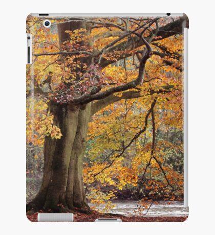 Every leaf speaks bliss to me... iPad Case/Skin
