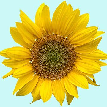 Sunflower by SoulWolfz
