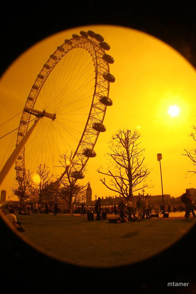 Orange Eye by mtamer