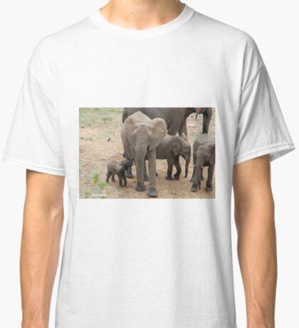 A BABY NEEDS FEEDING -  THE AFRICAN ELEPHANT – Loxodonta Africana Classic T-Shirt