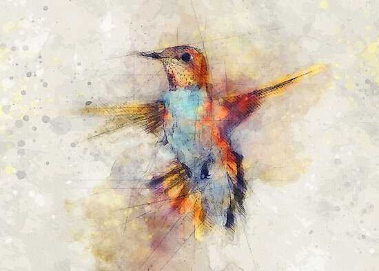 Hummingbird by JBJart