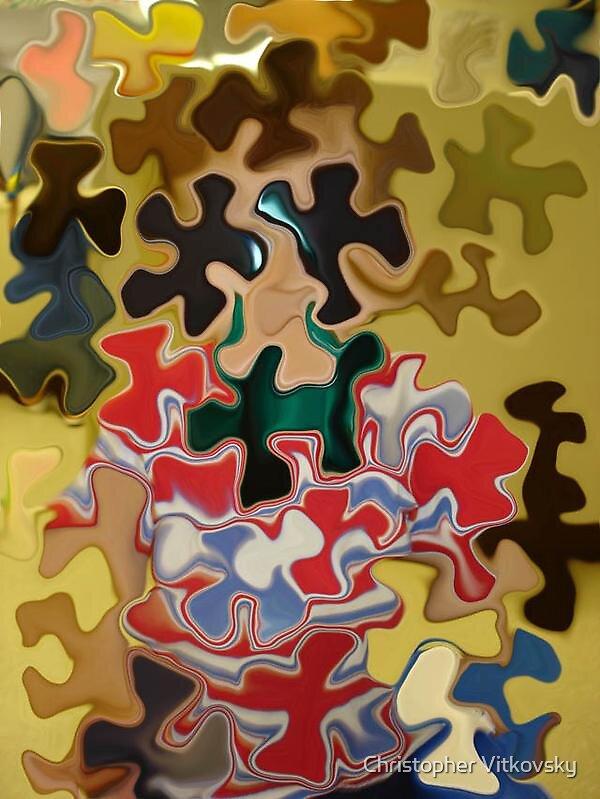 Puzzled Jacobe by Christopher Vitkovsky