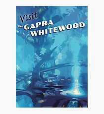 The Gapra Whitewood (Vertical) [FFXIII] - Vintage Travel Poster Photographic Print