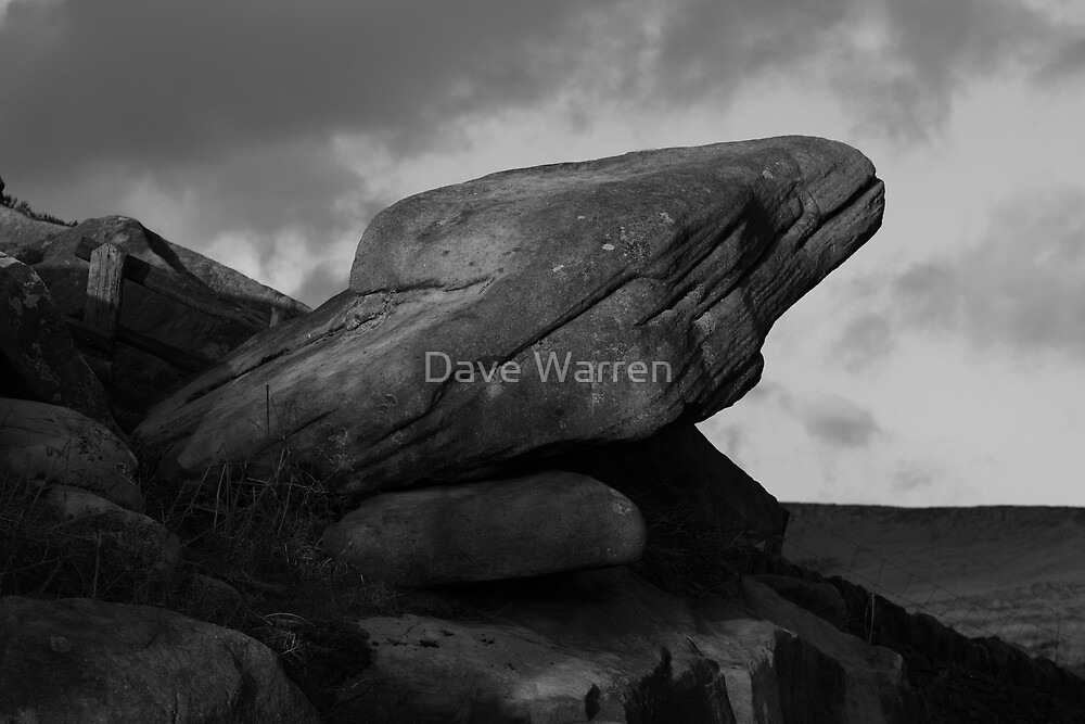The Toads Mouth by Dave Warren