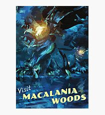Macalania Woods [FFX] - Vintage Travel Poster Photographic Print