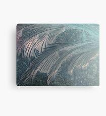 Iceflowers Canvas Print