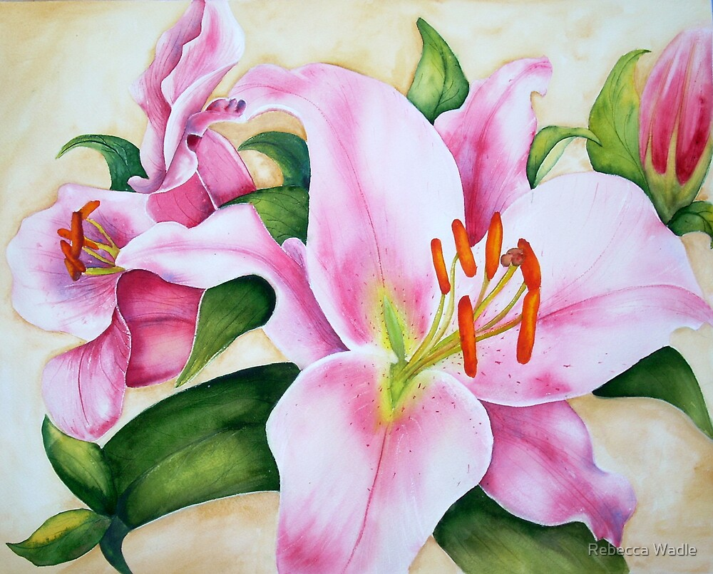 Pink Lilly # 149 by Rebecca Wadle