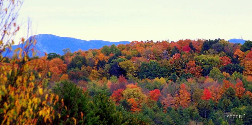 Fall Hillside by shenty1