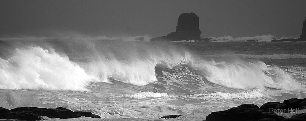Waves by Peter Hall