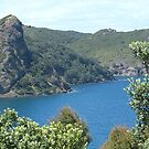 Blind Bay, Great Barrier Island.......! by Roy  Massicks