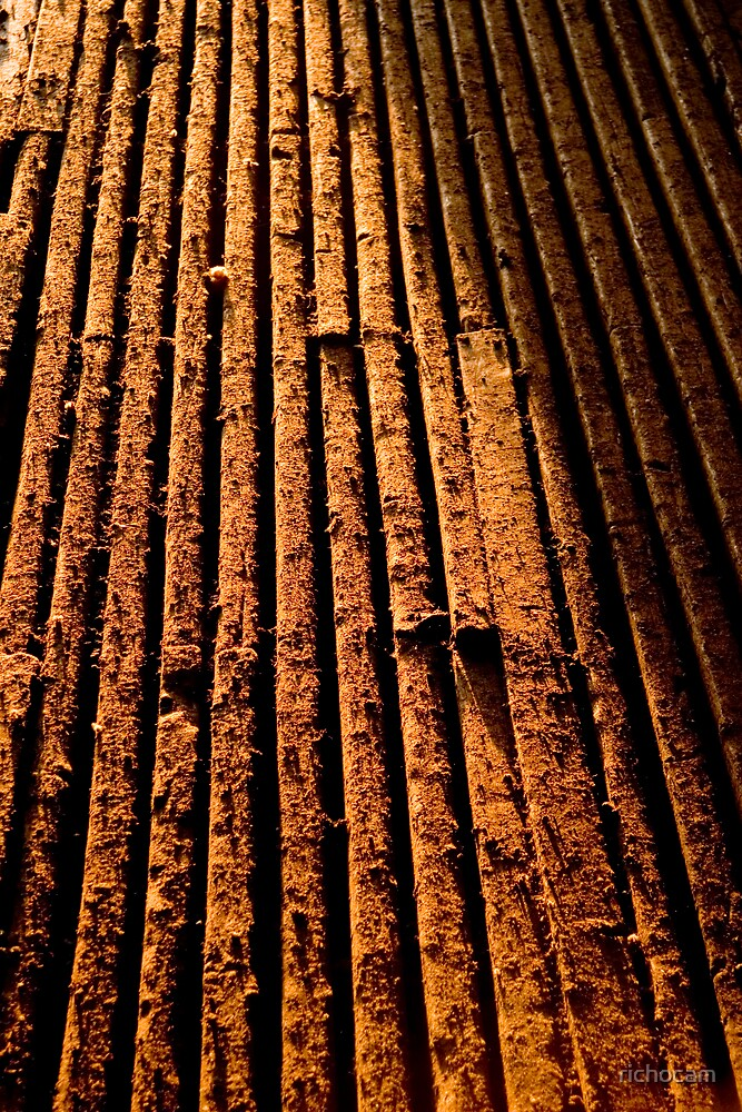 Shearing shed floor by richocam