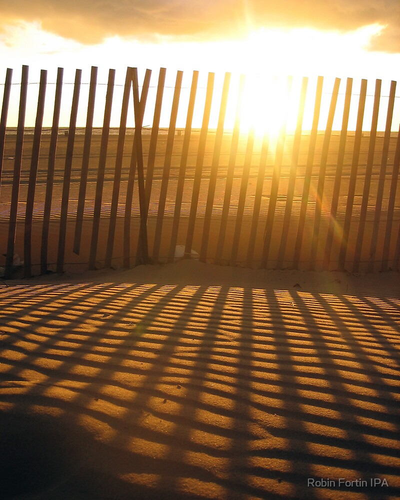 Fence creating sunlit stripes by Robin Fortin IPA