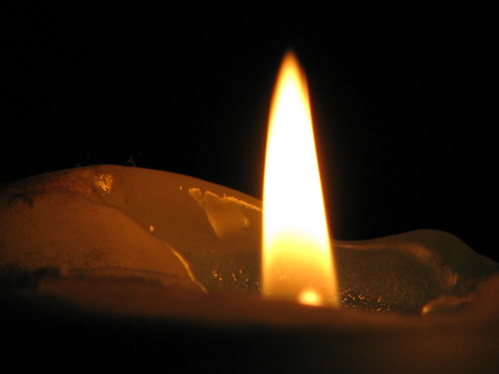 FLAME IN THE DARK by Opat