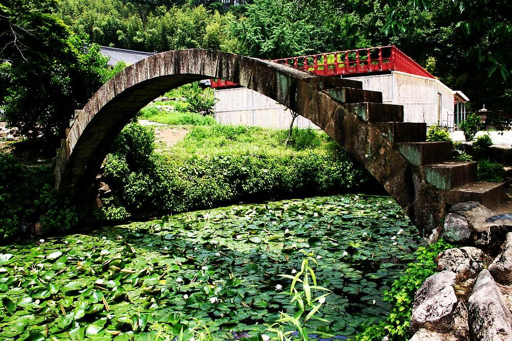 Bridge by caca37