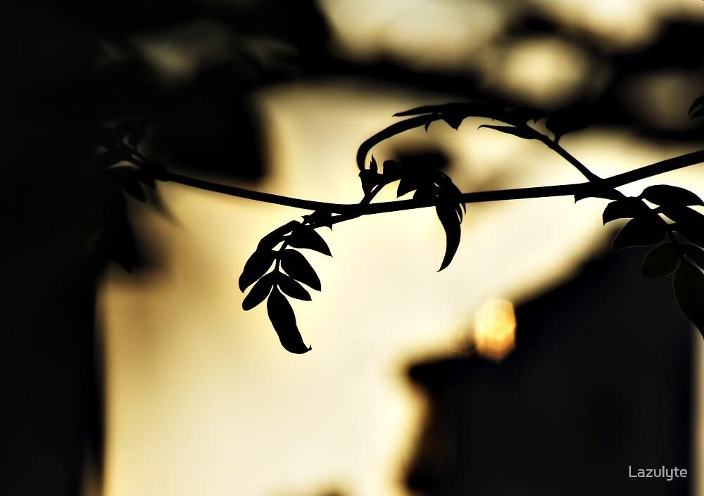 Evening Romance by Lazulyte
