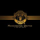 manchester united logo wallpaper by rerekevin