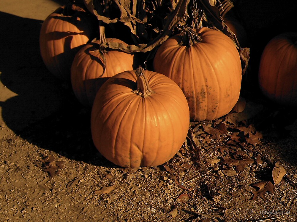 nostagic pumpkin picture by missgraice
