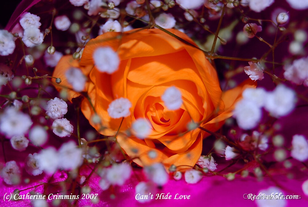 Cant Hide Love-- flower power project by Catherine Crimmins