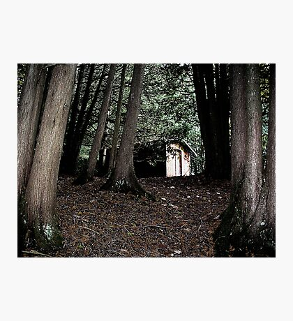 The Woodshed Photographic Print