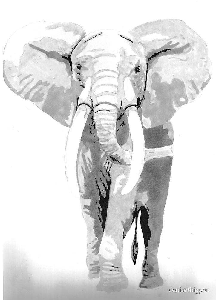 Elephant 2 by denisethigpen