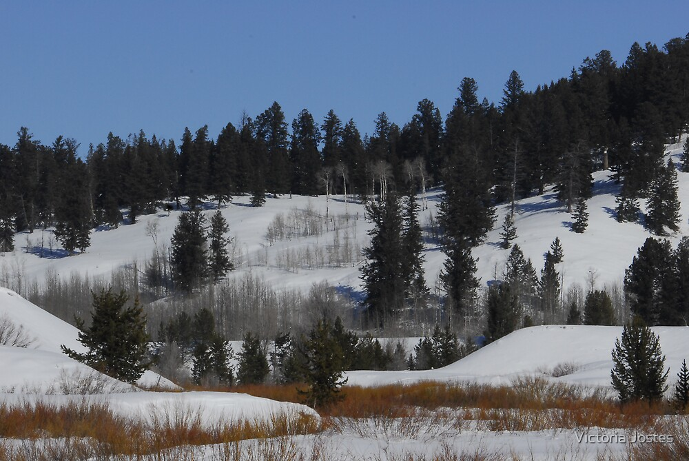Teton Winter by Victoria Jostes