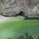 Pt. Lobos Sea Scape by Maizajean
