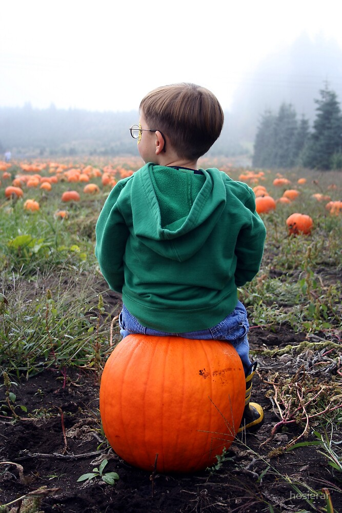 Pumpkin Buns by hosierar