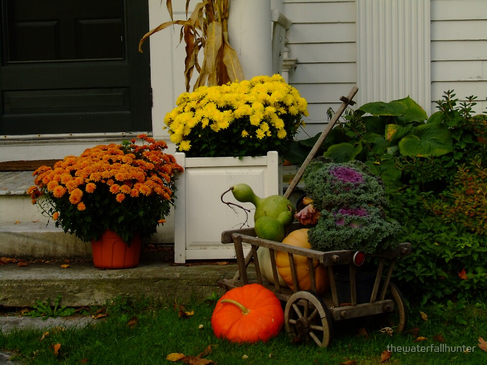 Gourds for Halloween by thewaterfallhunter