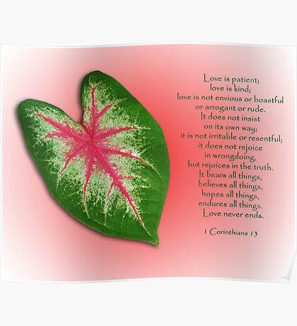 1 Corinthians 13 . . . Love is . . . Poster