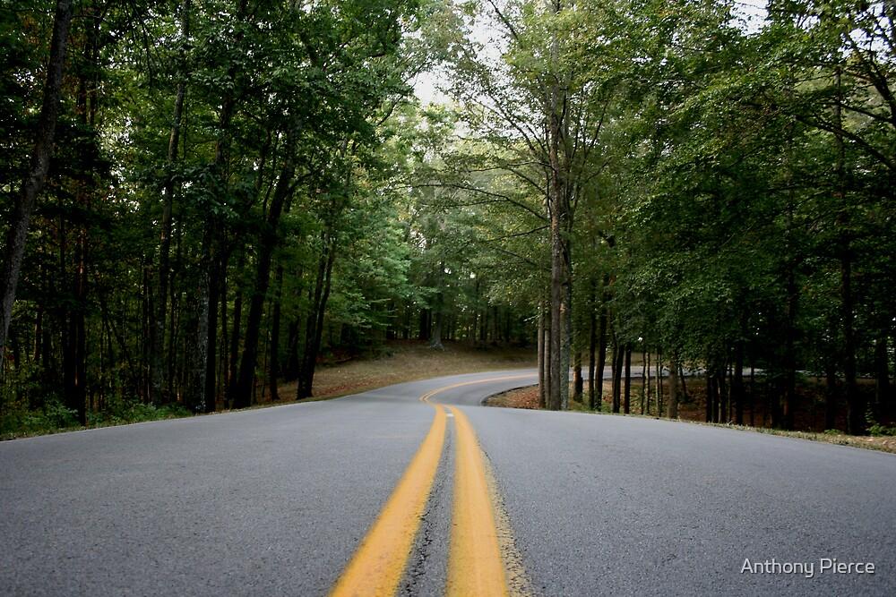 Lake Cumberland Park Road by Anthony Pierce