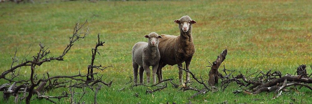 Mother & Daughter by JensLens