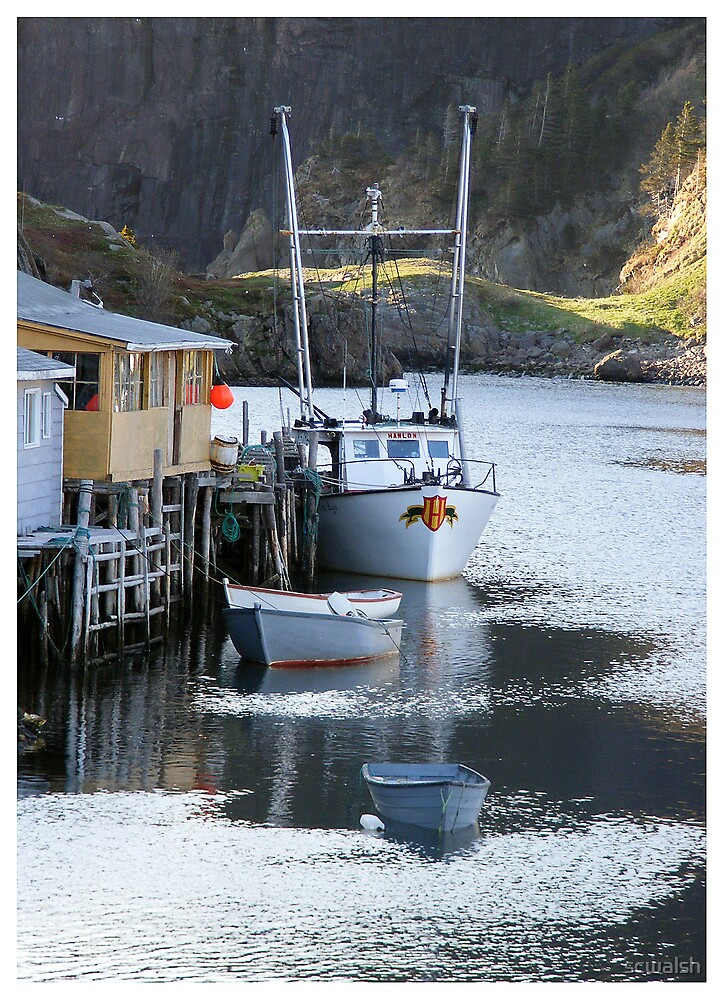 Quidi Vidi Harbour  by scwalsh