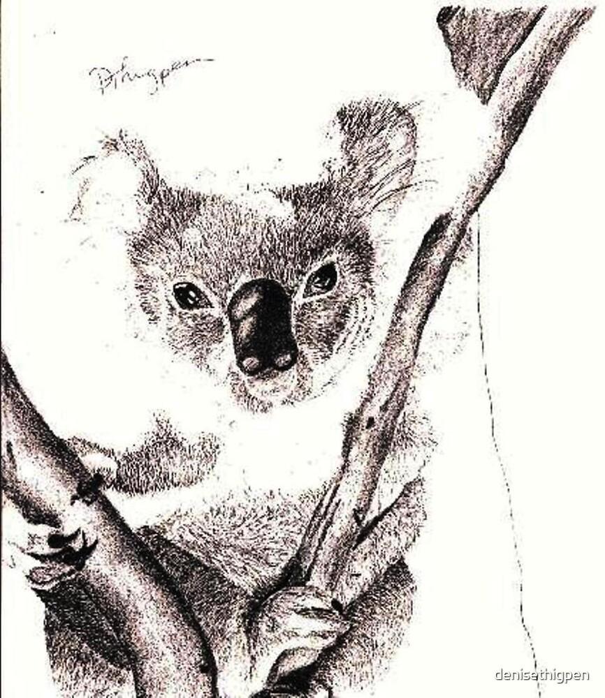 Koala by denisethigpen