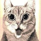 CAT by denisethigpen