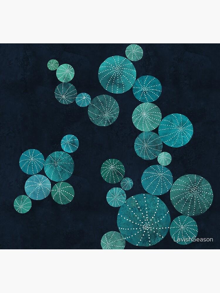Turquoise cactus field by LavishSeason