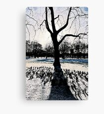A Colder Tree Canvas Print