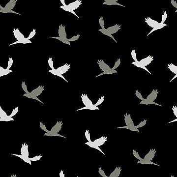 Birds by michalarieli