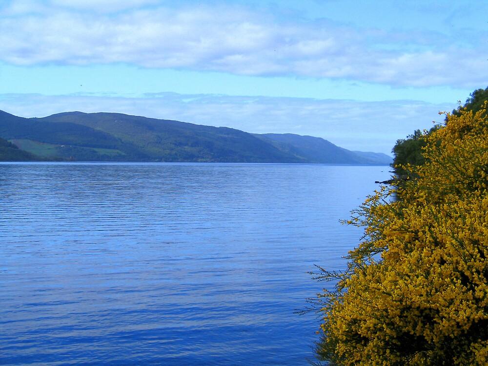 Loch Ness by John  Simmons