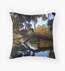 Fall River Reflections 2 Throw Pillow