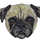 PUG pug109 by Hares & Critters