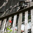 Juliet's Balcony. by Nando MacHado