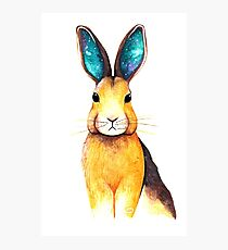 Galaxy Eared Hare Watercolour Photographic Print