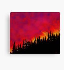 Sky On Fire Canvas Print