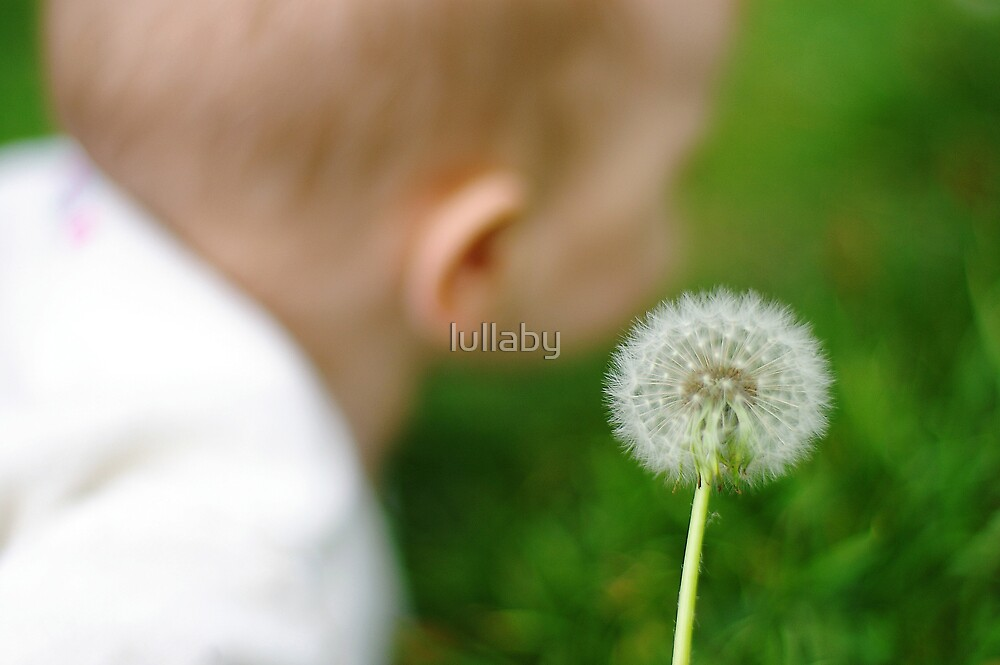 baby bokeh ;-) by lullaby