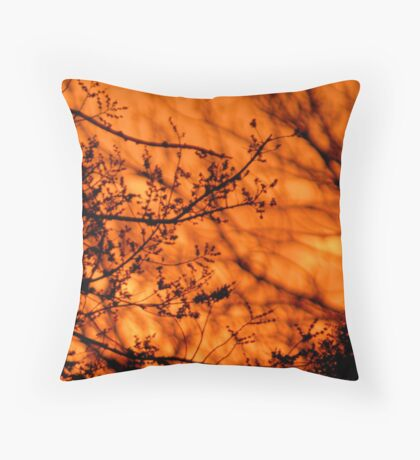 Dawn's Descent Throw Pillow