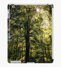 The Dark Woods iPad Case/Skin